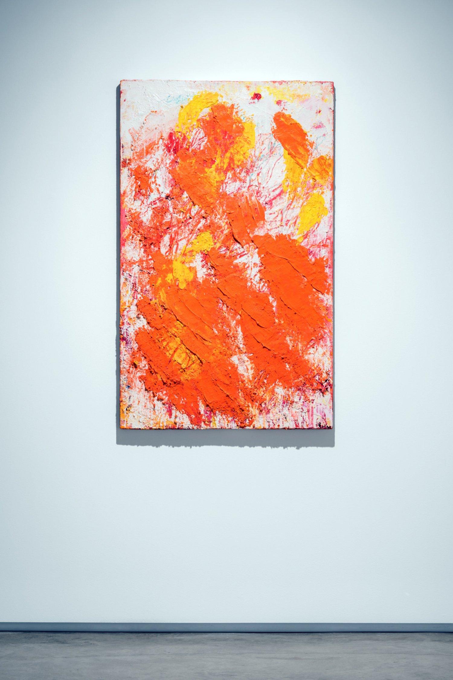 Aida Tomescu, Installation 005 Eyes In The Heat