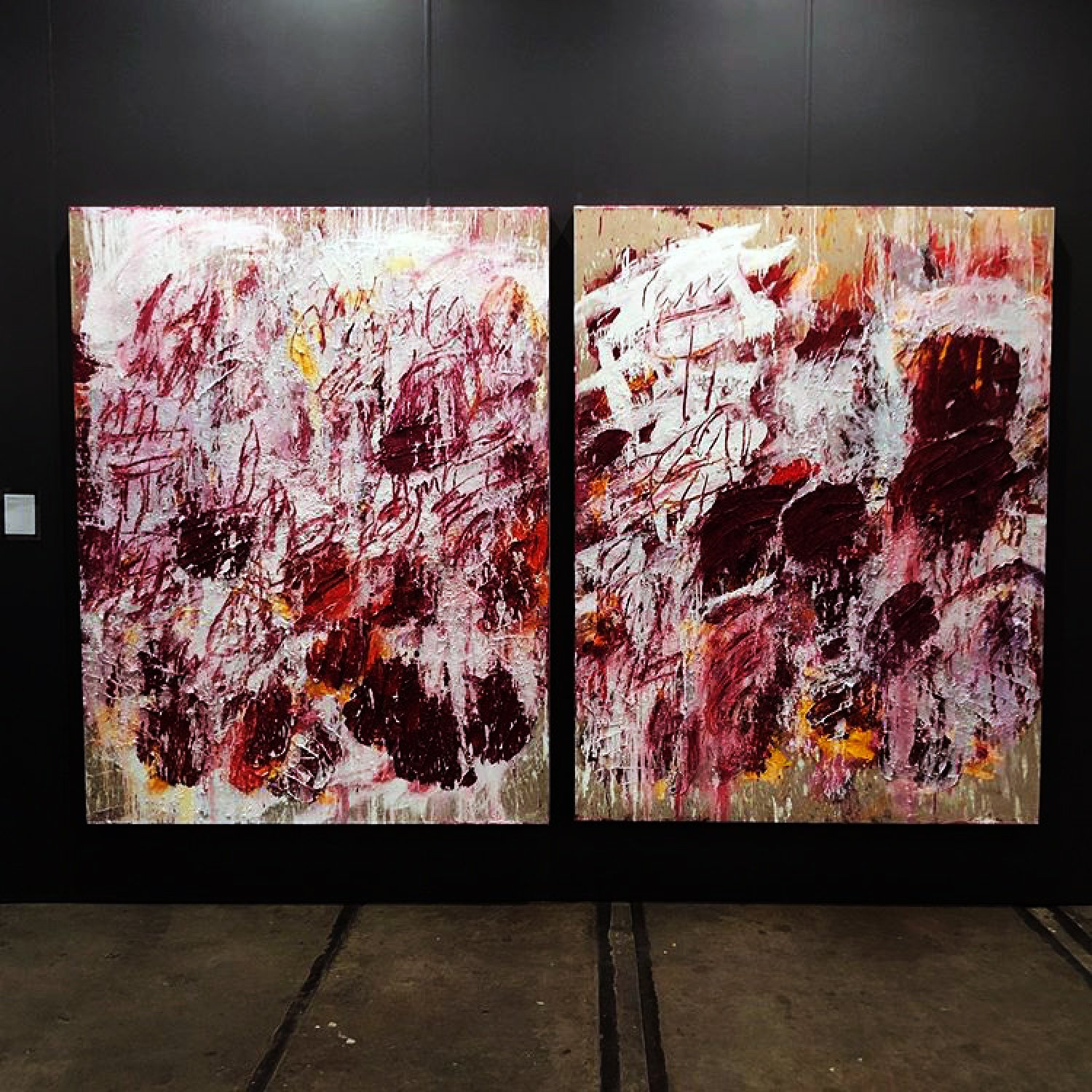Aida Tomescu, THE OPEN WOUNDS OF WHITE CLOUDS, DIPTYCH, INSTALLATION VIEW