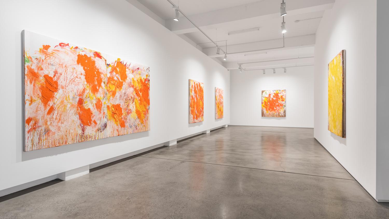 Aida Tomescu, Installation 001 Eyes In The Heat