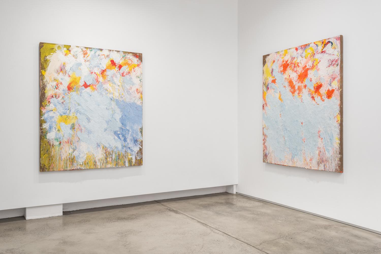 Aida Tomescu, Installation 002 Eyes In The Heat