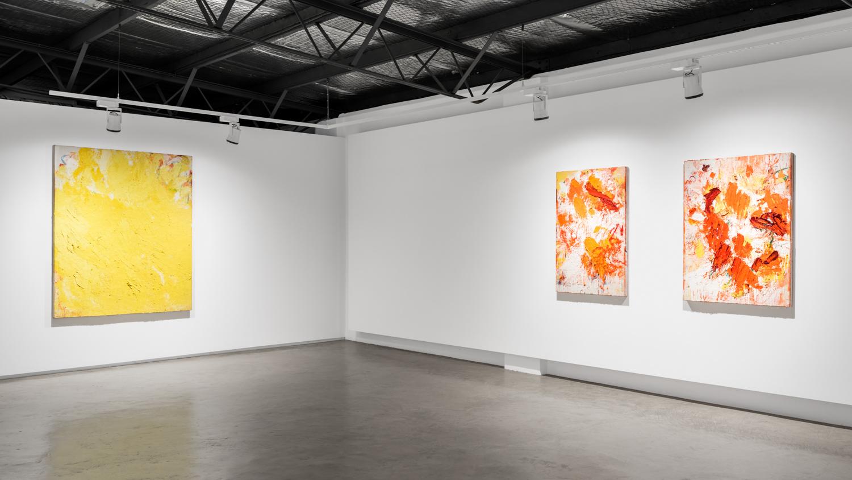 Aida Tomescu, Installation 004 Eyes In The Heat