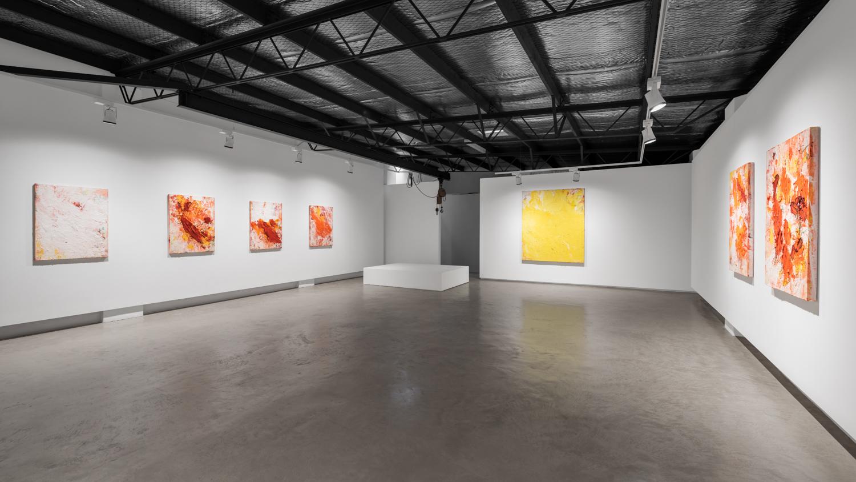 Aida Tomescu, Installation 007 Eyes In The Heat